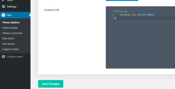 The Custom CSS section of Divi Theme Options with the focus outline code in the Custom CSS box.