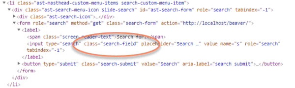 Code for Astra search form with class equals search field circled
