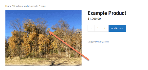 screenshot of example woocommerce product with arrow pointing to product image