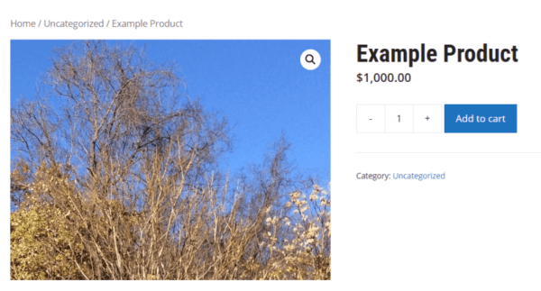 screenshot of an example WooCommerce product with the image zoomed.